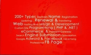 DomainPlus_B.jpg