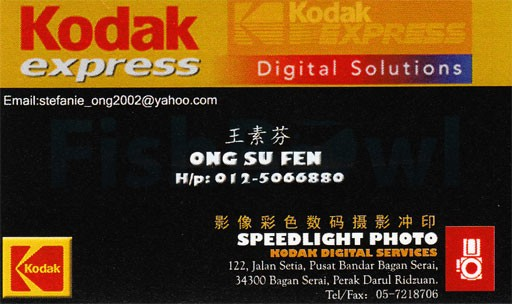 SpeedlightPhoto_F.jpg