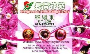 evergreen_F.jpg